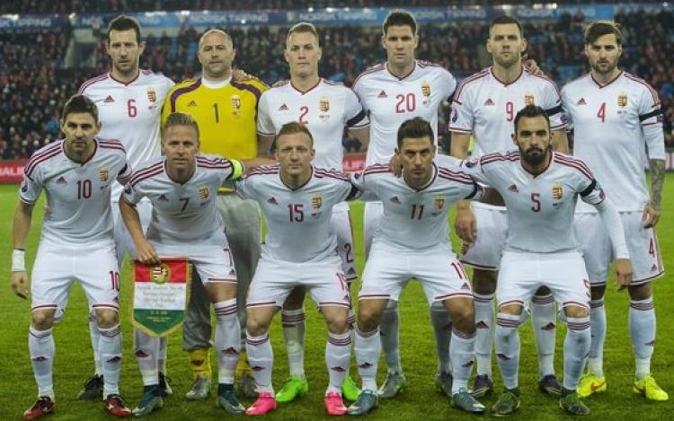 élő foci közvetítés online magyar